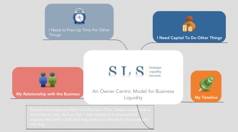 Mind Map: An Owner Centric Model for Business Liquidity