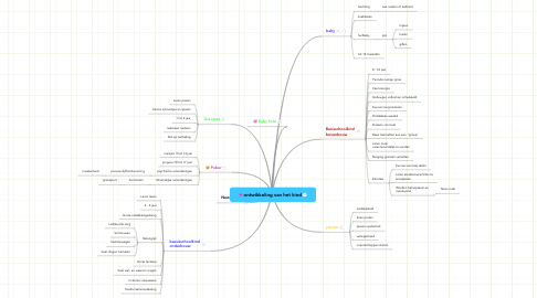 Mind Map: ontwikkeling van het kind