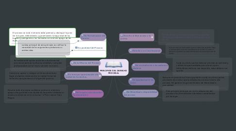 Mind Map: PRINCIPIOS DEL DERECHO PROCESAL