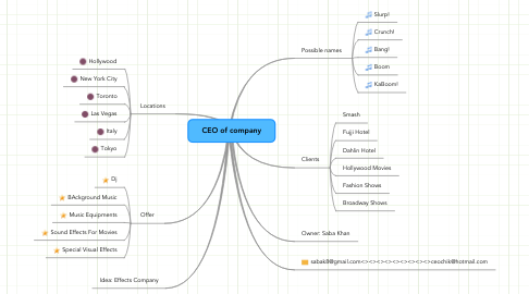 Mind Map: CEO of company