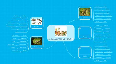 Mind Map: ANIMALES VERTEBRADOS