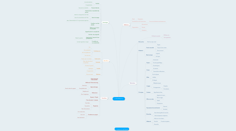 Mind Map: Le MindMapping