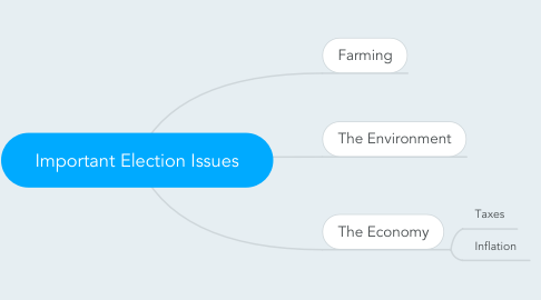 Mind Map: Important Election Issues