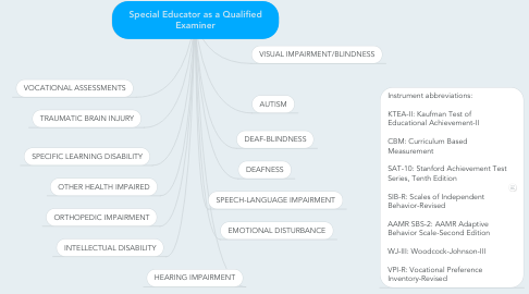Mind Map: Special Educator as a Qualified Examiner