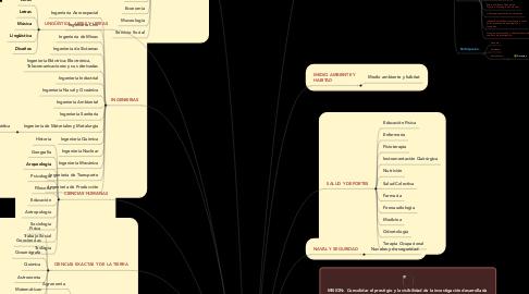 Mind Map: PROGRAMA SEMILLEROS DE INVESTIGACION