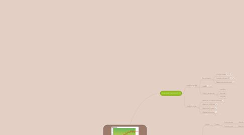 Mind Map: Comment améliorer la productivité et les variétés dans un agrosystème ?