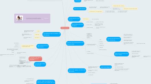 Mind Map: analisis de sistema