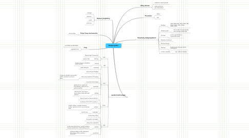 Mind Map: Dataprojektor