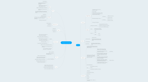 Mind Map: Flashpoint Learnings