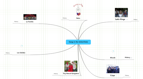 Mind Map: Gangs in the United State