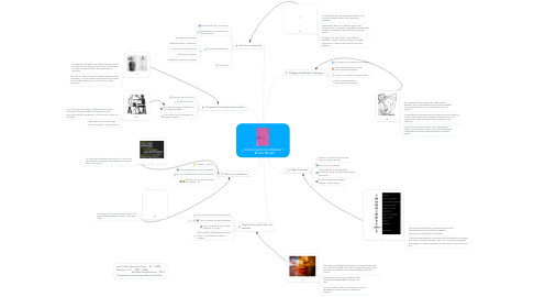 Mind Map: ¿ Cómo nacen los Objetos ?     Bruno Munari