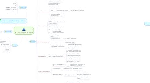 Mind Map: LA WEB COMO PLATAFORMA