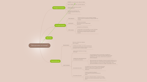 Mind Map: Para que serve um survey?