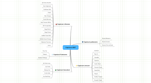 Mind Map: Capsicum 2007