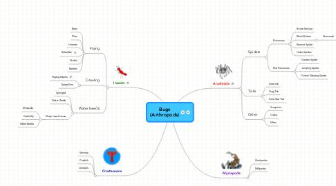 Mind Map: Bugs (Arthropods)