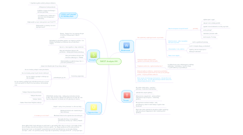 Mind Map: SWOT Analysis HH