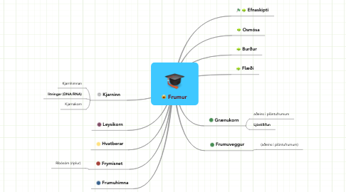 Mind Map: Frumur