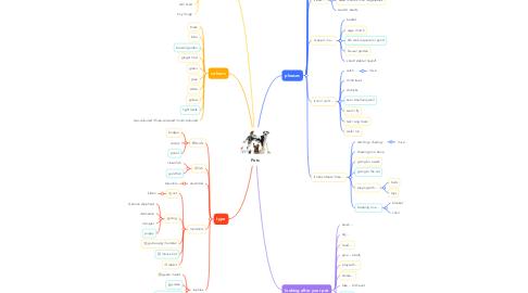 Mind Map: Pets