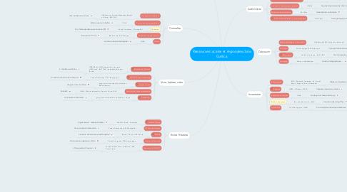 Mind Map: Ressources locales et régionales dans Gallica