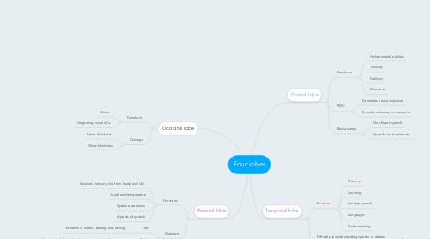 Mind Map: Four lobes