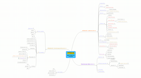 Mind Map: Mapa Constructor