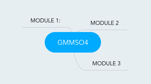 Mind Map: GMMSO4