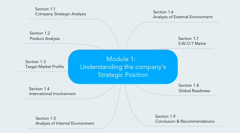 Mind Map: Module 1:   Understanding the company's Strategic Position