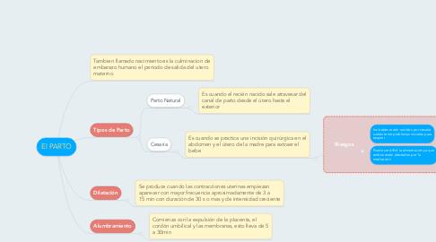 Mind Map: El PARTO