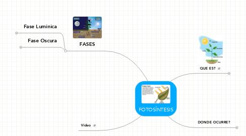 Mind Map: FOTOSÍNTESIS