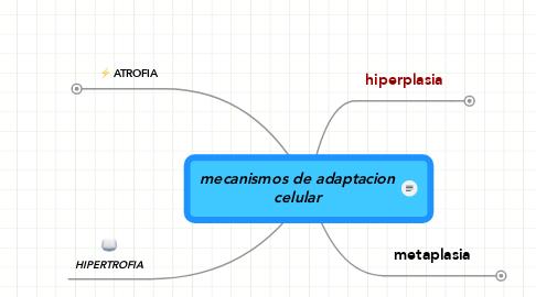 Mind Map: mecanismos de adaptacion celular