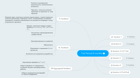 Mind Map: Trial Period (3 months)