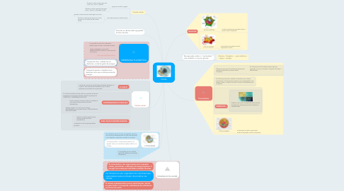 Mind Map: Célula