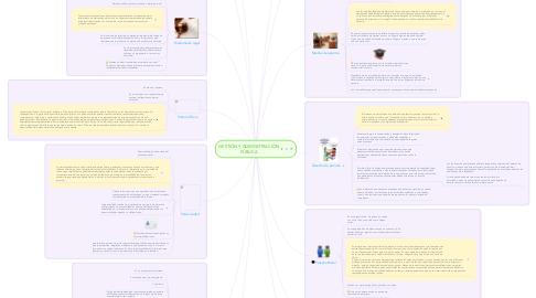 Mind Map: GESTIÓN Y ADMINISTRACIÓN PÚBLICA