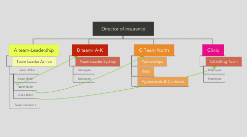 Mind Map: Director of insurance