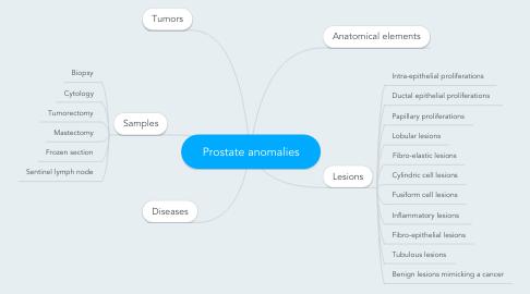 Mind Map: Prostate anomalies