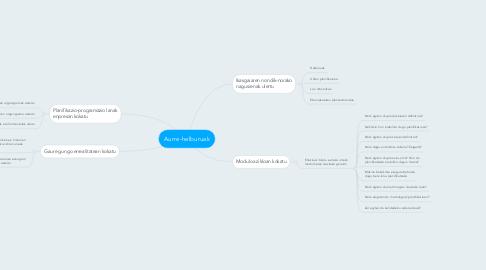 Mind Map: Aurre-helburuak