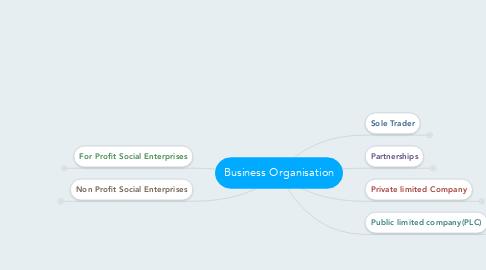 Mind Map: Business Organisation