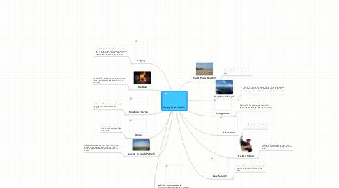 Mind Map: Spring break 2010!!!