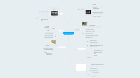Mind Map: 7 Aspects of Civilization