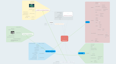 Mind Map: COMMUNICATIE