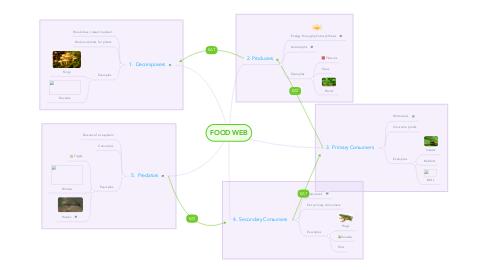 Mind Map: FOOD WEB