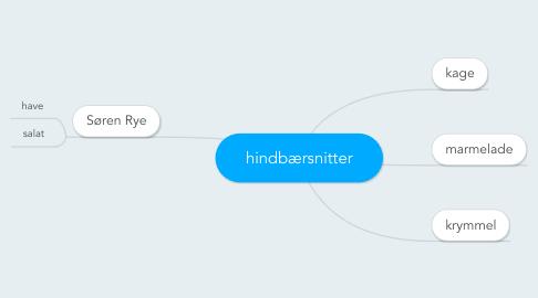 Mind Map: hindbærsnitter
