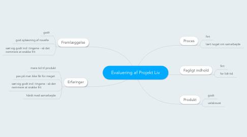Mind Map: Evaluering af Projekt Liv