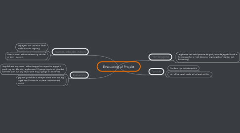 Mind Map: Evaluering af Projekt