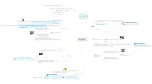 Mind Map: Lord of the Flies- Rules and Laws