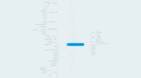 Mind Map: De ideale school van groep 1