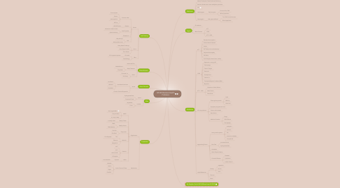 Mind Map: MTHFR Related Health Problems