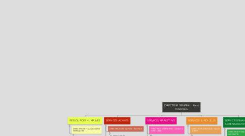 Mind Map: DIRECTEUR GENERAL : Remi THIERICHE
