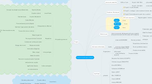 Mind Map: Réunion de pilotage mensuelle