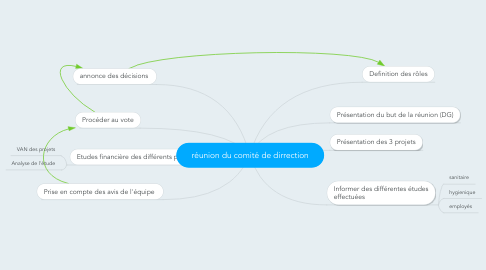 Mind Map: réunion du comité de dirrection